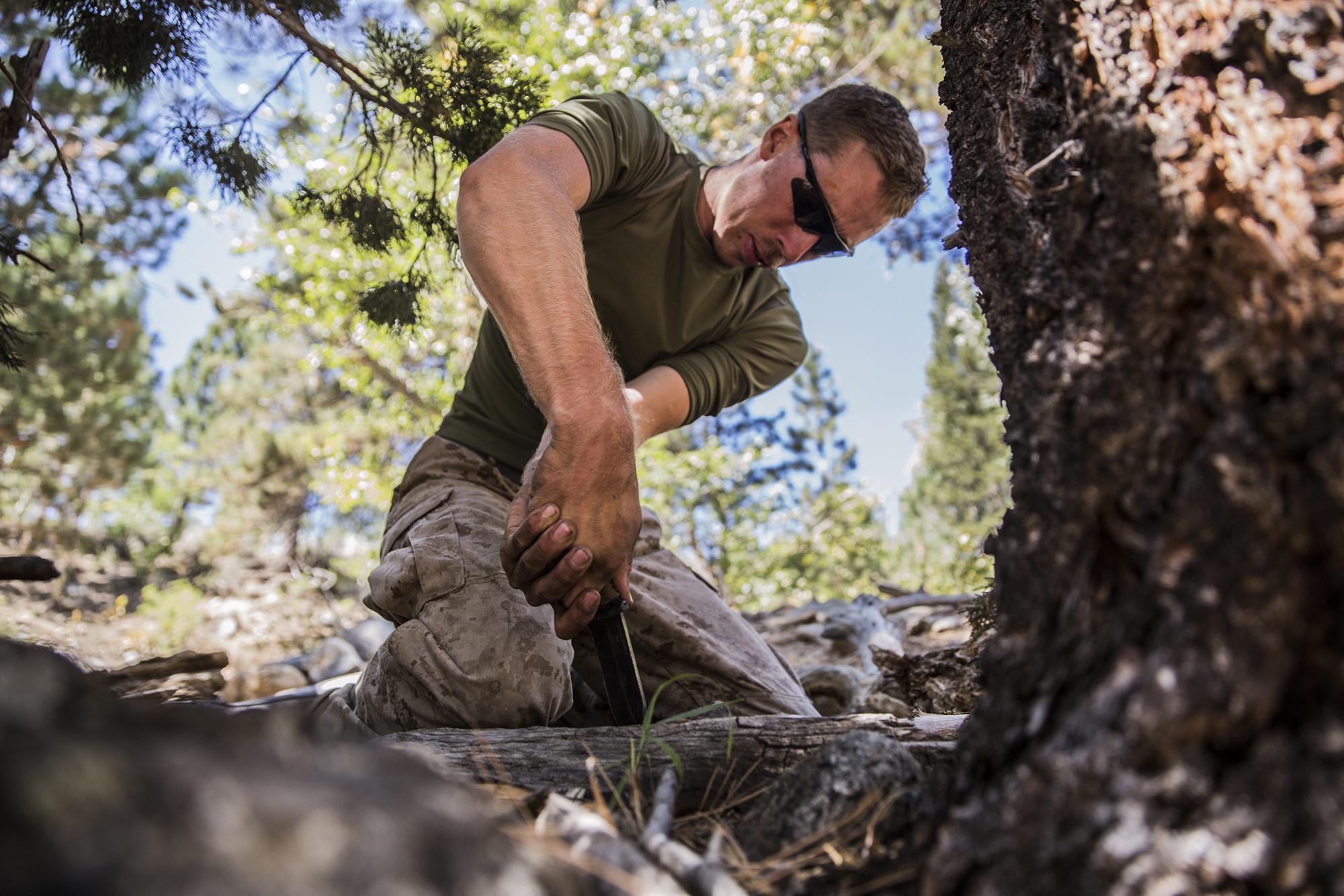 карьеры месторождения выжить в лесу фото для белья помогают