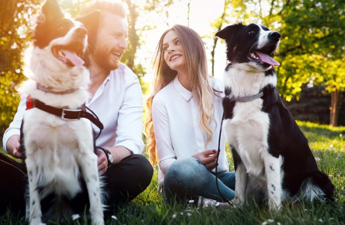 5 Things Any Pet Lover Needs