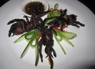 6 Strangest Foods Across the Globe